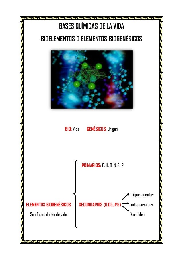 BASES QUÌMICAS DE LA VIDA BIOELEMENTOS O ELEMENTOS BIOGENÈSICOS  BIO: Vida  GENÈSICOS: Origen  PRIMARIOS: C, H, O, N, S, P...