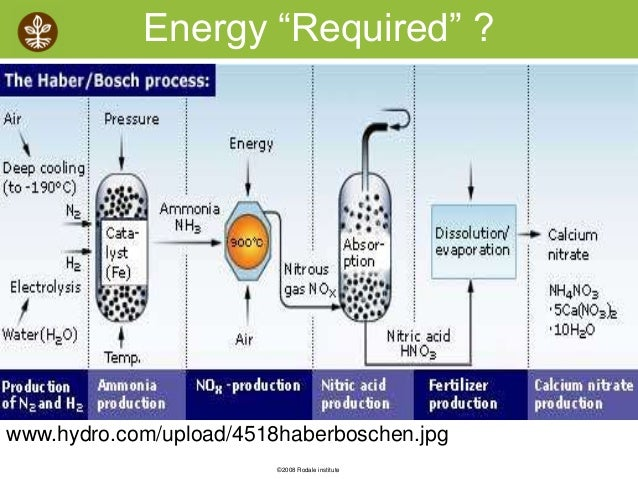 the production of ammonia and the haber process