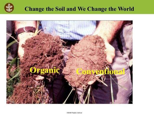 图片:土壤从并排传统的VS有机生长试验在Rodale Institute进行。你能告诉哪些土壤有更多的生物学和更多的碳?图片版权所有Rodale Institute:http://rodaleinstitute.org/。