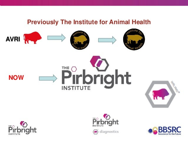 Previously The Institute for Animal HealthAVRINOW