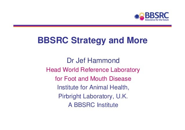 BBSRC Strategy and More       Dr Jef Hammond Head World Reference Laboratory   for Foot and Mouth Disease    Institute for...