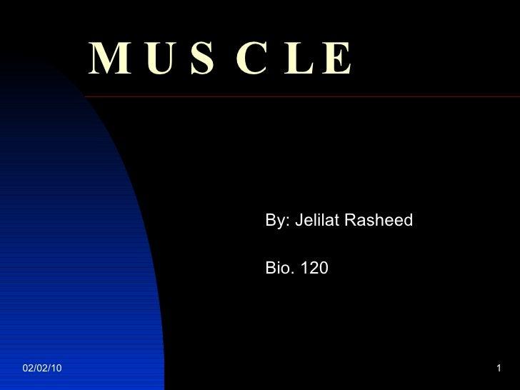 MUSCLE By: Jelilat Rasheed Bio. 120