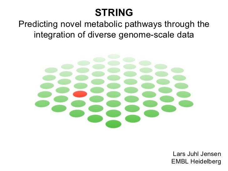 STRING Predicting novel metabolic pathways through the integration of diverse genome-scale data Lars Juhl Jensen EMBL Heid...