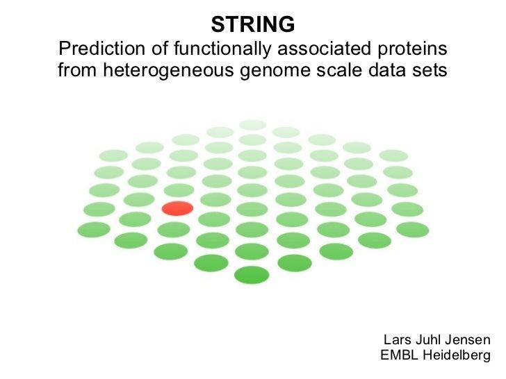 STRING Prediction of functionally associated proteins from heterogeneous genome scale data sets Lars Juhl Jensen EMBL Heid...