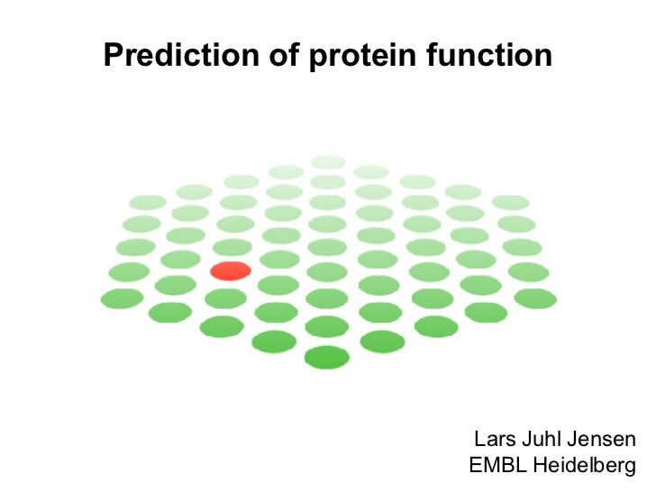 Prediction of protein function Lars Juhl Jensen EMBL Heidelberg