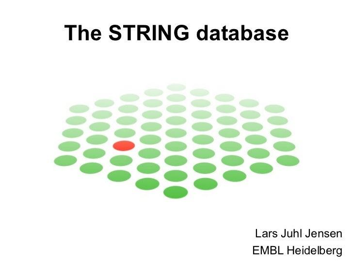 The STRING database Lars Juhl Jensen EMBL Heidelberg