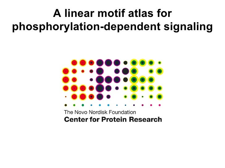 A linear motif atlas for phosphorylation-dependent signaling