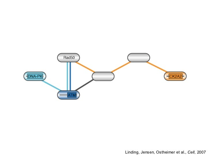 Network biology: Large-scale biomedical data and text mining