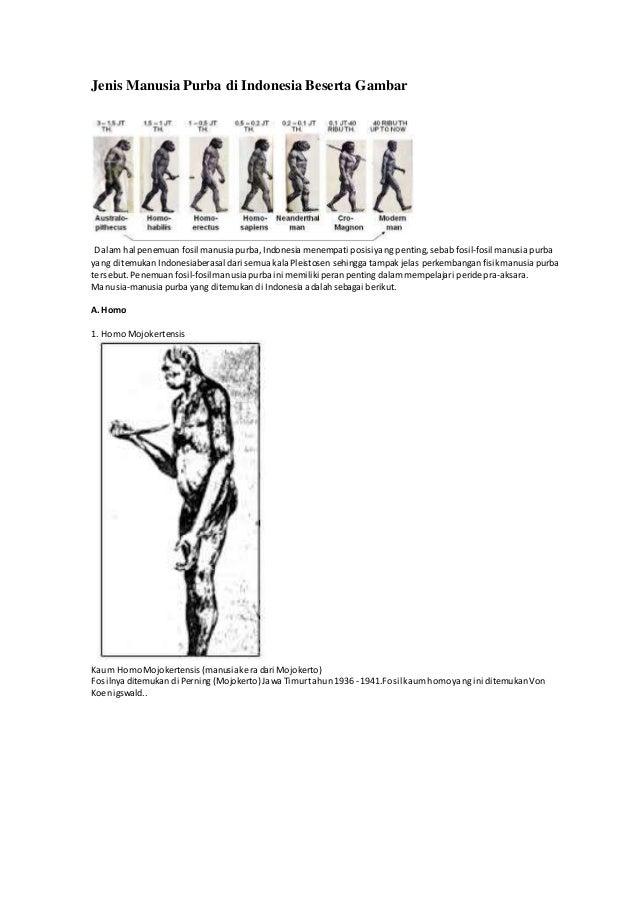 Jenis Manusia Purba di Indonesia Beserta Gambar  Dalam hal penemuan fosil manusia purba, Indonesia menempati posisi yang p...