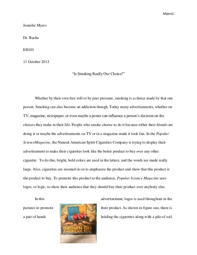 examples of essays about pets