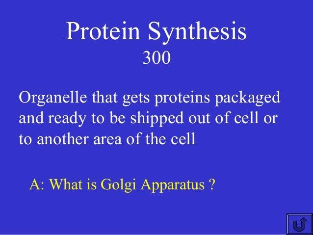 Jeopardy biology keystone module2
