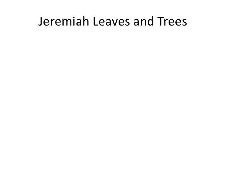 Jeremiah Leaves and Trees<br />