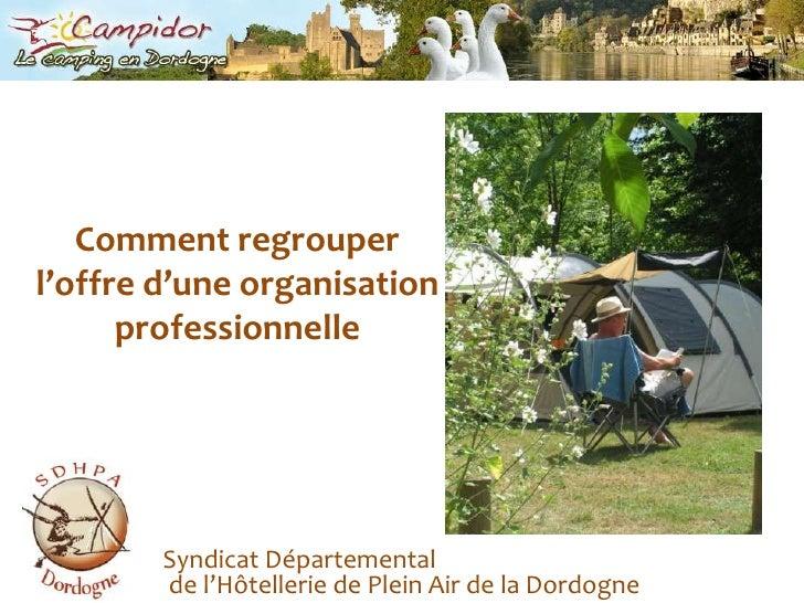 Comment regrouper l'offre d'une organisationprofessionnelle<br />Syndicat Départemental de l'Hôtellerie de Plein Air de la...
