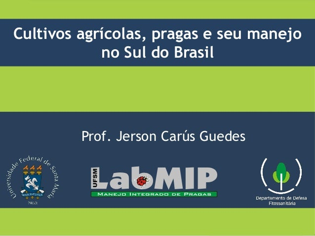 Prof. Jerson Carús Guedes Cultivos agrícolas, pragas e seu manejo no Sul do Brasil