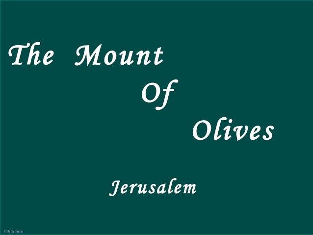 Mount of Olives                                                    Jerusalem  The Mount                        The Mount o...