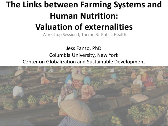 The Links between Farming Systems and Human Nutrition: Valuation of externalities Workshop Session I, Theme 3: Public Heal...