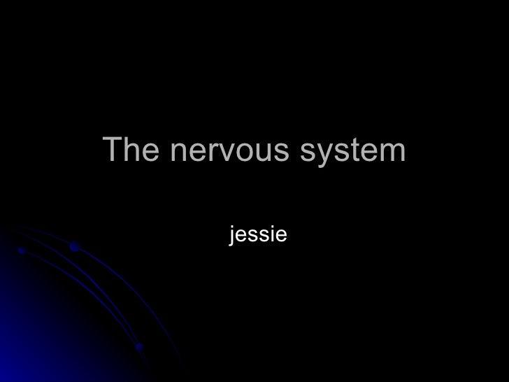 The nervous system jessie