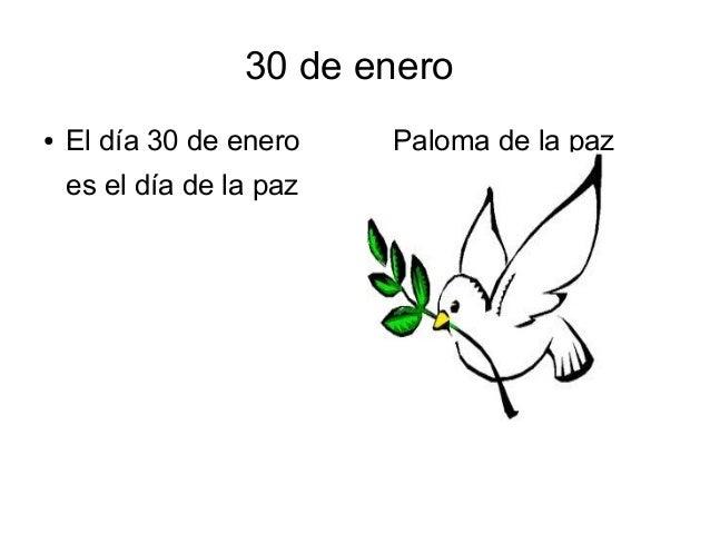30 de enero●   El día 30 de enero    Paloma de la paz    es el día de la paz