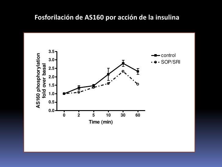 Resistencia a la acción de la insulina en cultivos