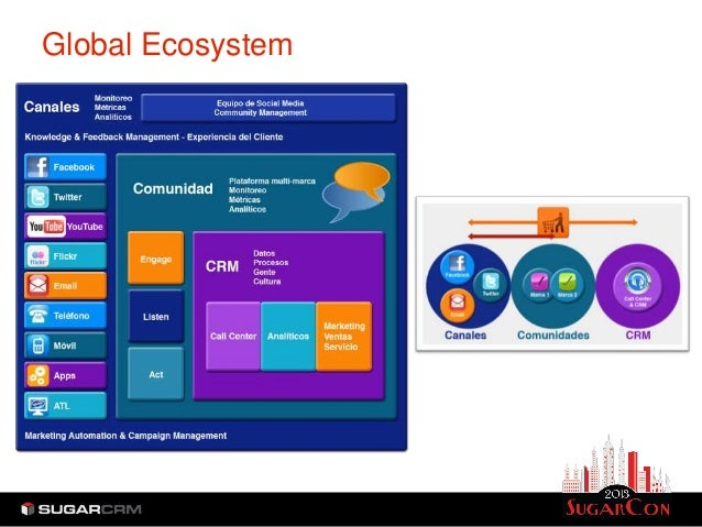 Global Ecosystem