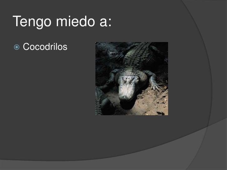 Tengo miedo a:<br />Cocodrilos<br />