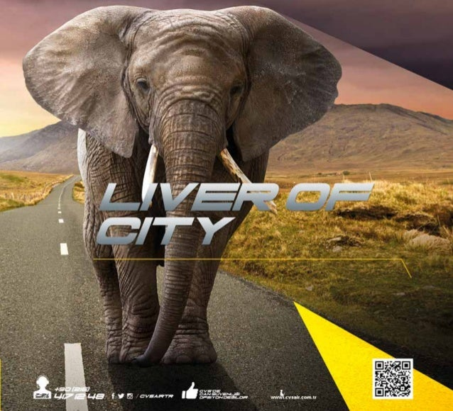 .cvsair.com.tr 11 MODEL Motor(kW) Speed(rpm) 0Pa 100Pa 200Pa 300Pa 400Pa 500Pa 600Pa 700Pa 800Pa Price(Eur) 1,1 3000 7.400...