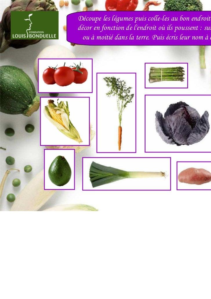Découpe les légumes puis colle-les au bon endroit sur ledécor en fonction de lendroit où ils poussent : sur, sous  ou à mo...