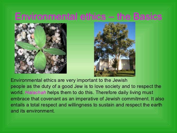 Essays on christians and the environment
