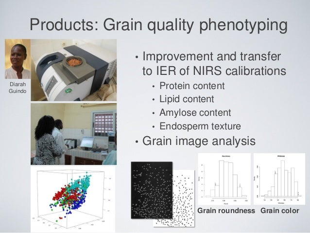 Products: Grain quality phenotyping • Improvement and transfer to IER of NIRS calibrations • Protein content • Lipid conte...