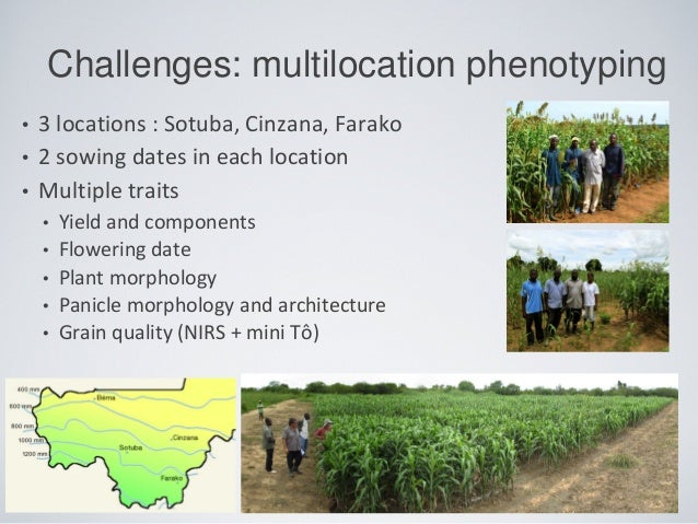 • 3 locations : Sotuba, Cinzana, Farako • 2 sowing dates in each location • Multiple traits • Yield and components • Flowe...