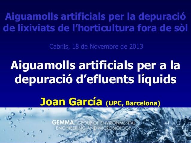 Aiguamolls artificials per la depuració de lixiviats de l'horticultura fora de sòl Cabrils, 18 de Novembre de 2013  Aiguam...