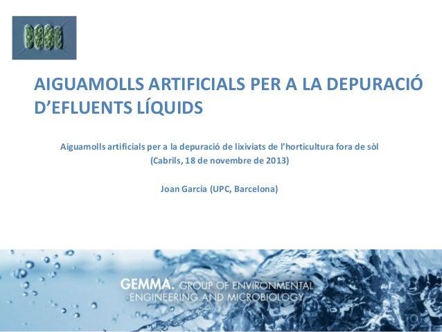 AIGUAMOLLS ARTIFICIALS PER A LA DEPURACIÓ D'EFLUENTS LÍQUIDS Aiguamolls artificials per a la depuració de lixiviats de l'h...