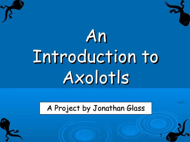 1 AnAn Introduction toIntroduction to AxolotlsAxolotls A Project by Jonathan GlassA Project by Jonathan Glass