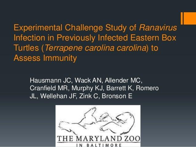 Experimental Challenge Study of Ranavirus Infection in Previously Infected Eastern Box Turtles (Terrapene carolina carolin...