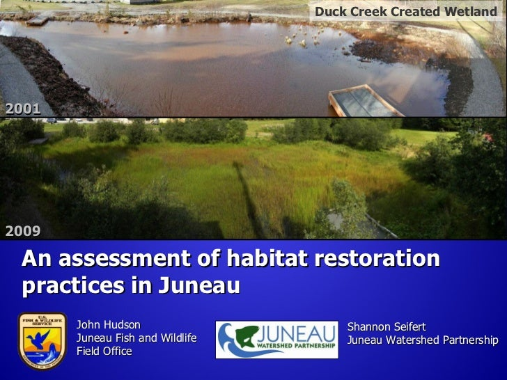 Duck Creek Created Wetland20012009 An assessment of habitat restoration practices in Juneau       John Hudson             ...
