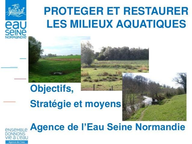 PROTEGER ET RESTAURER LES MILIEUX AQUATIQUES Objectifs, Stratégie et moyens Agence de l'Eau Seine Normandie