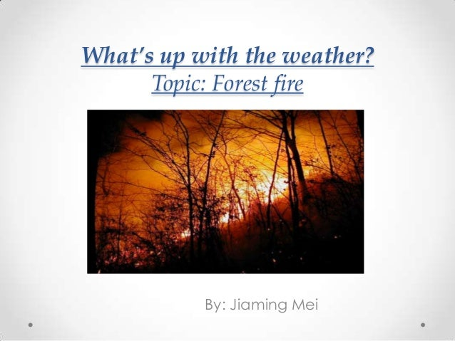 What's up with the weather?      Topic: Forest fire           By: Jiaming Mei