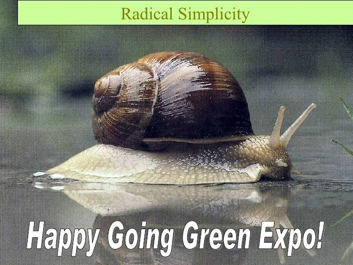 Sustainable Design – what is it? Radical Simplicity Happy Going Green Expo!