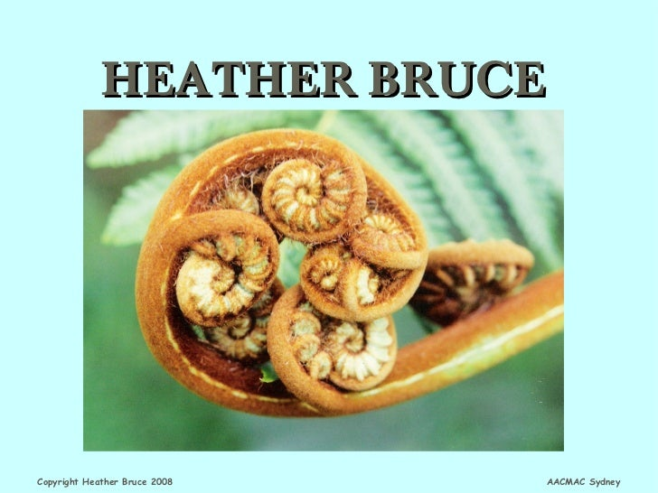 HEATHER BRUCECopyright Heather Bruce 2008   AACMAC Sydney