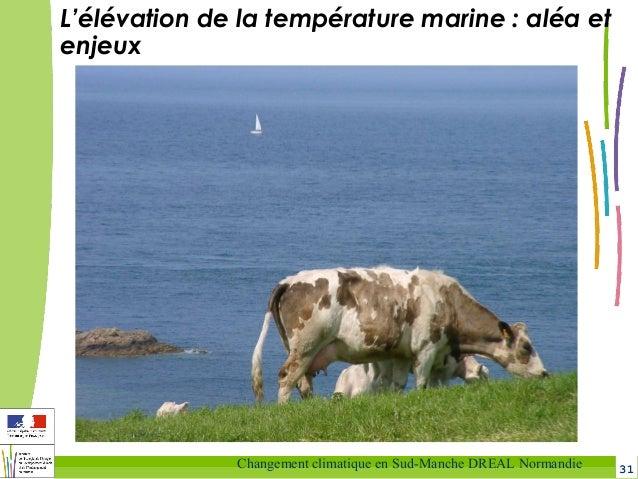 31Changement climatique en Sud-Manche DREAL Normandie L'élévation de la température marine: aléa et enjeux