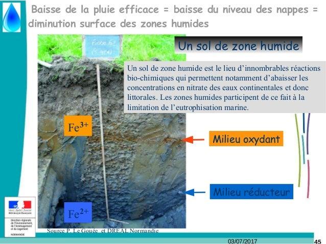 03/07/2017 Baisse de la pluie efficace = baisse du niveau des nappes = diminution surface des zones humides Fe2+ Fe3+ Mili...