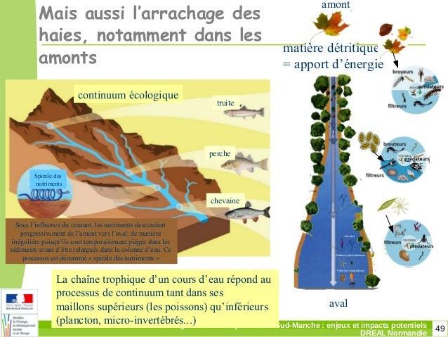 49Changement climatique dans le Sud-Manche: enjeux et impacts potentiels DREAL Normandie Mais aussi l'arrachage des haies...
