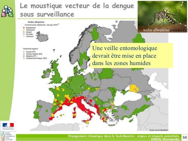 58Changement climatique dans le Sud-Manche: enjeux et impacts potentiels DREAL Normandie Aedes albopictus (wikipédia) Le ...