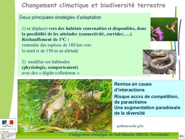 61Changement climatique en Sud-Manche DREAL Normandie Changement climatique et biodiversité terrestre Deux principales str...