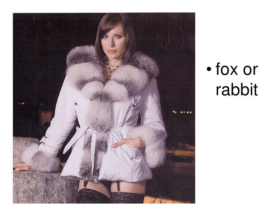 • fox or  rabbit