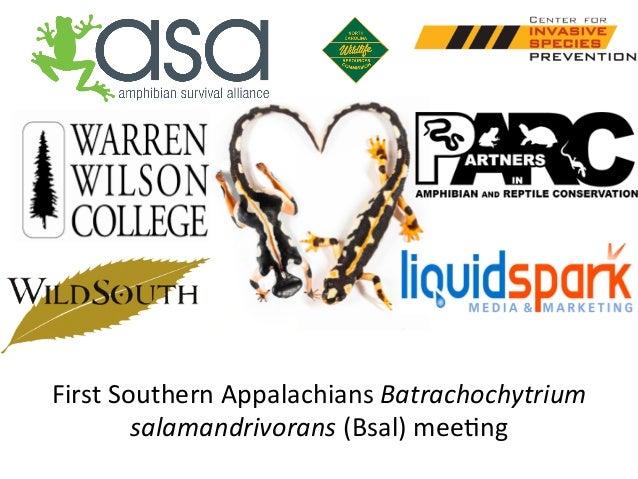 First  Southern  Appalachians  Batrachochytrium   salamandrivorans  (Bsal)  mee6ng
