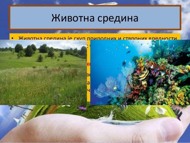 Проблематика угрожавања непосредне животне средине уз поштовање принципа одрживог развоја Slide 2