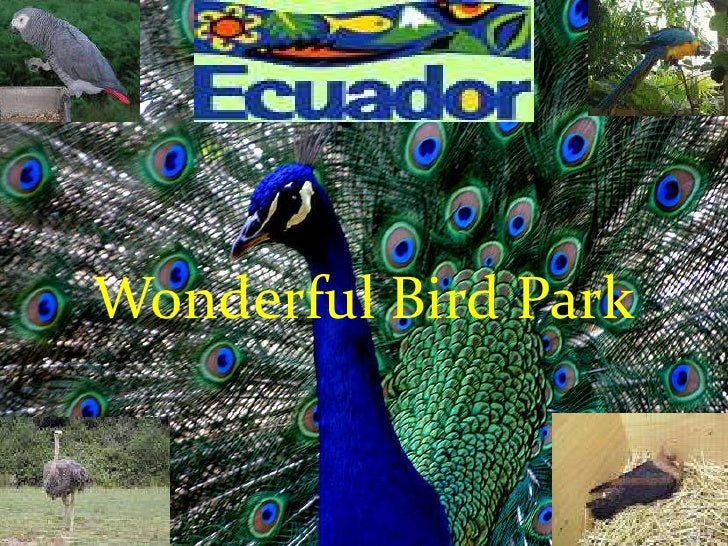 Wonderful Bird Park<br />