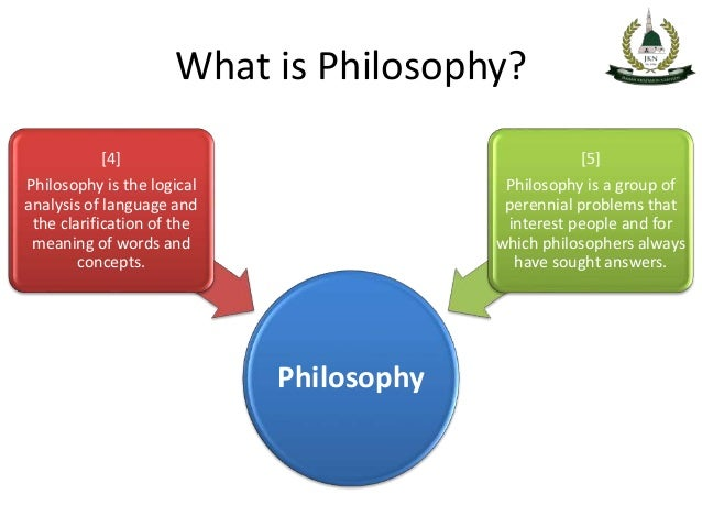 "what is philosophy Philosophers can serve a vital purpose by practicing ""negative philosophy,""  which counters premature certainty about empirical and ethical."