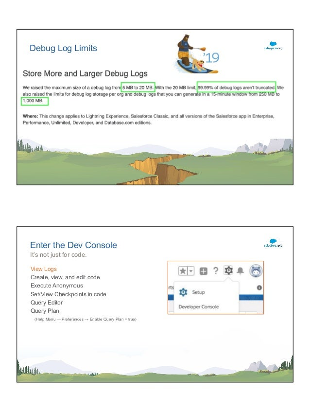 Bug Hunting with the Salesforce Developer Console